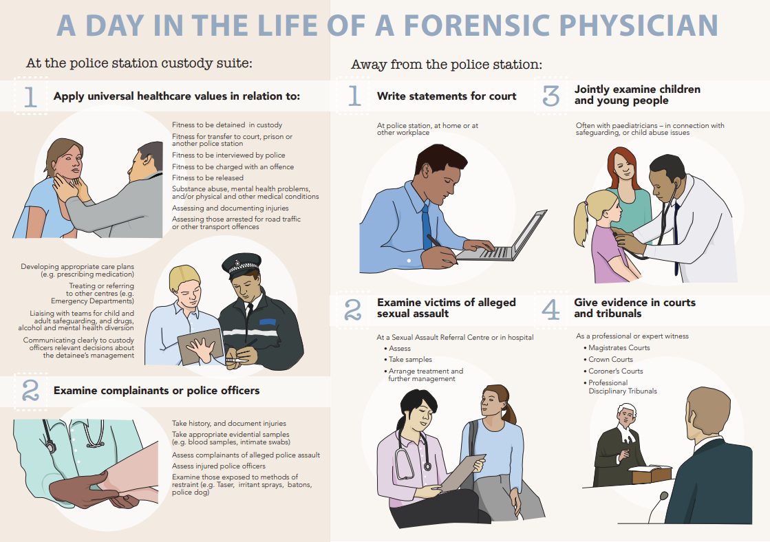 Infographic Forensic Physician